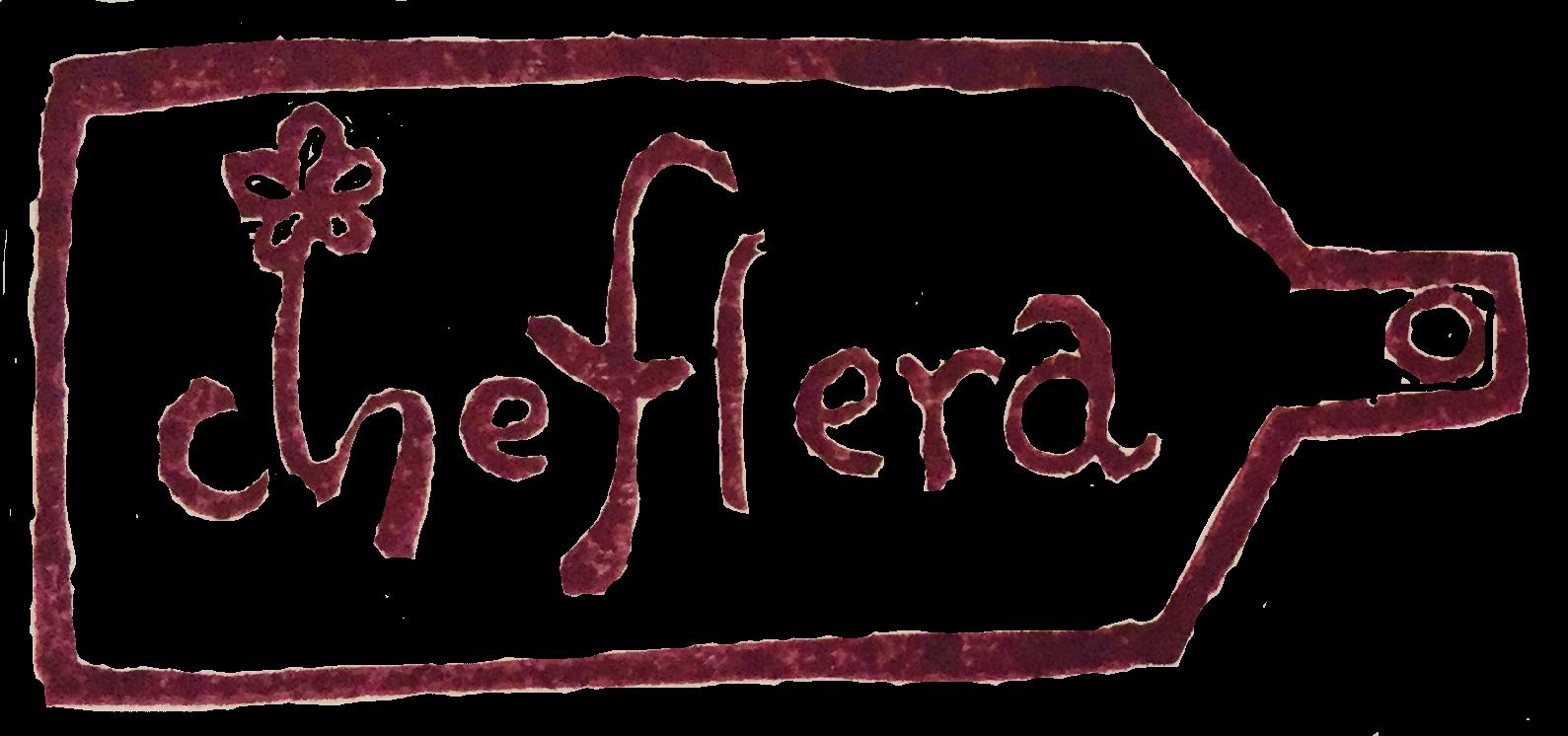 Chefleraシェフレラ